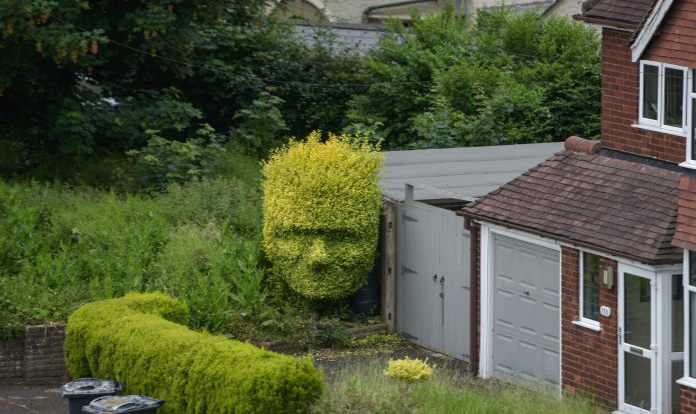 Cutting-hedge art