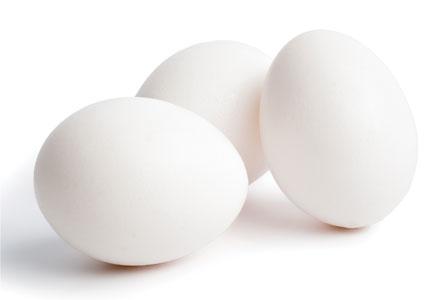 EggishEggs_Embedded