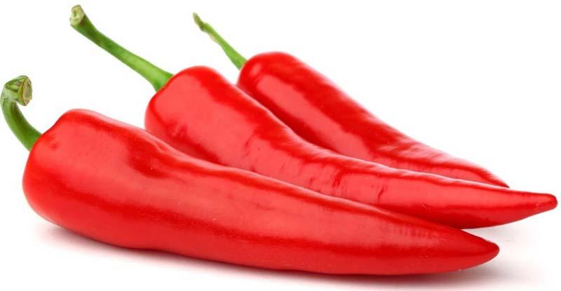 red-chilli-1599323