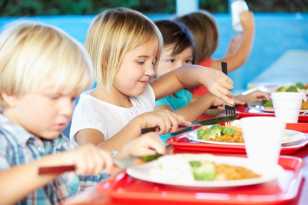 primary-lunch children
